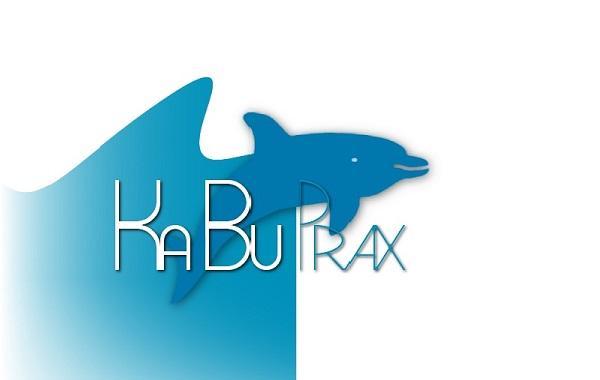 Lösung KaBuPrax - Kassenbuch Software für Arztpraxen